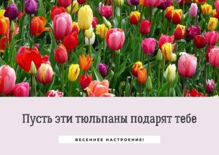 Открытка «Весенние цветы»