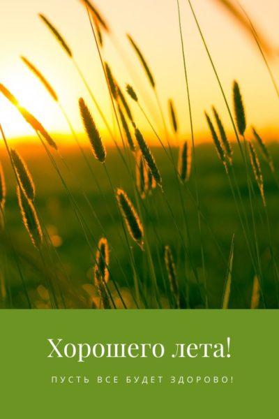 Открытка «Хорошего лета!»