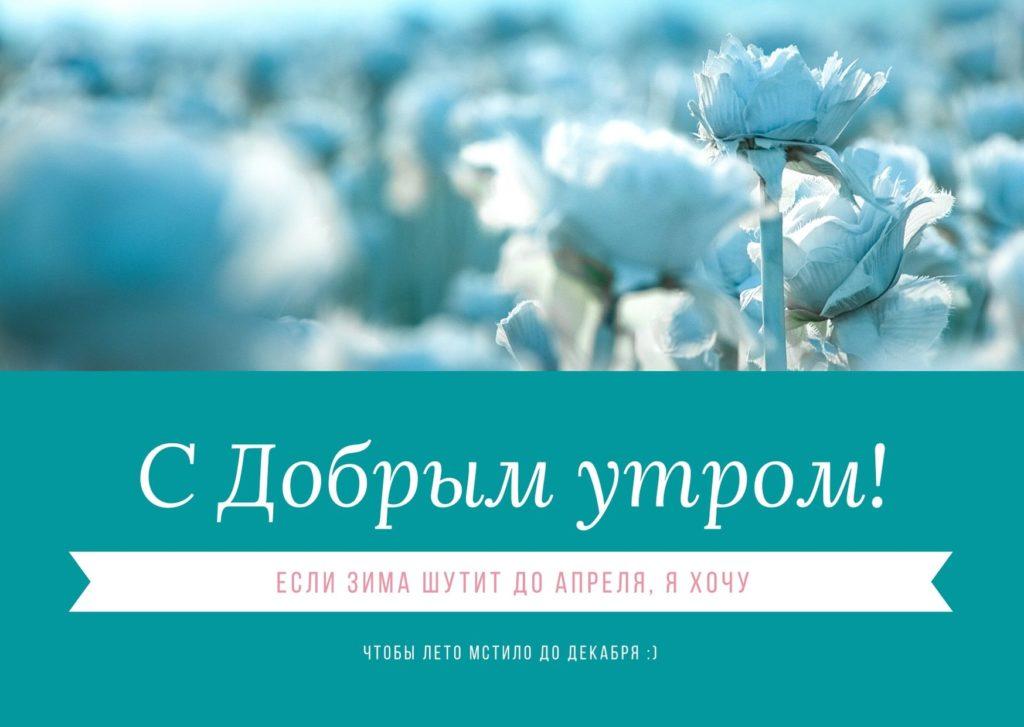 Прикольная зимняя открытка