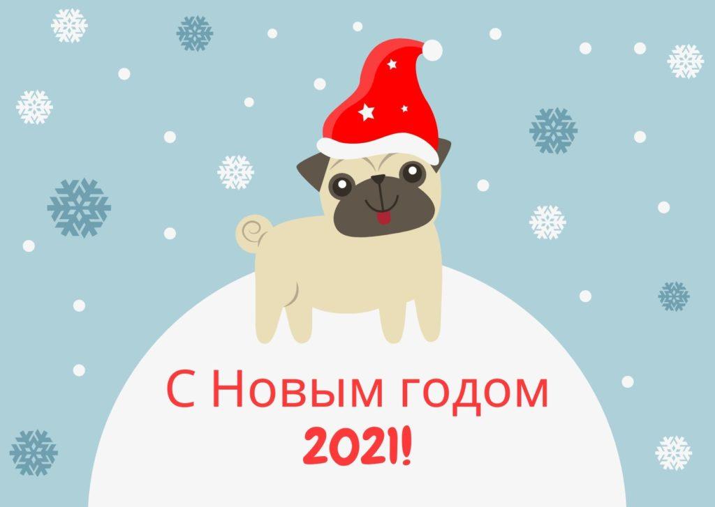 Открытка с Новым годом 2021 с щенком в колпачке